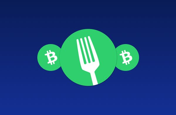 The Nov 15th 2020 Bitcoin Cash fork, and what it means for our customers