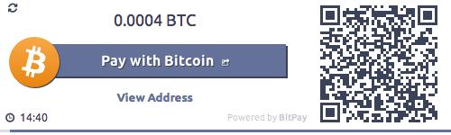 Bitcoin Payment Gateway API | BitPay